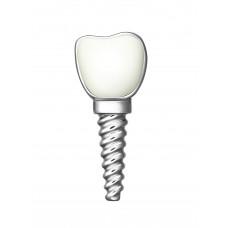 "Значок ""Зуб имплант"""