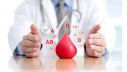 Влияние группы крови на характер